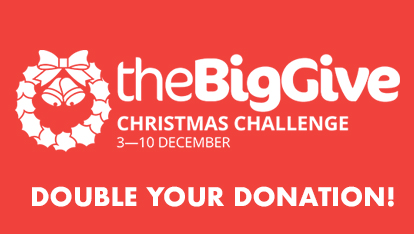 The Big Give 2019