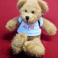 Embrace mascot Alfie Bear